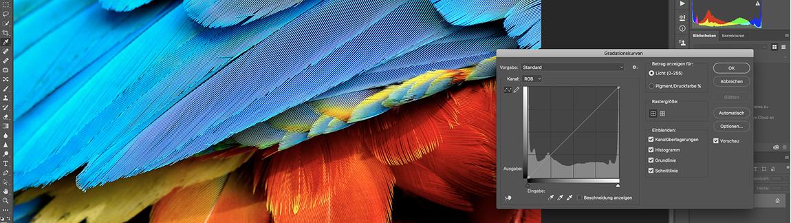 Fotoworkshops Bildbearbeitung-Blende 16